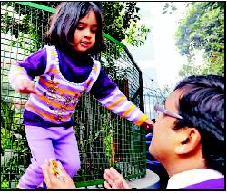 Nursery admissions: Points system keeps...